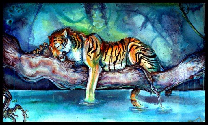 Beautiful-tiger-tigers-5092222-800-483